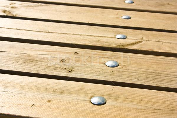 Cinza unhas textura árvore parede Foto stock © vkraskouski