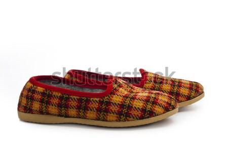 pairs of kid's slippers  Stock photo © vkraskouski