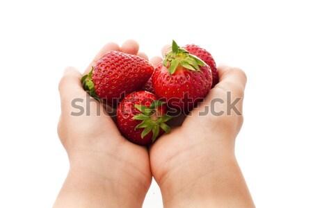 Morangos mãos isolado branco comida Foto stock © vkraskouski