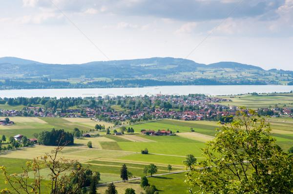green Valley Stock photo © vlaru