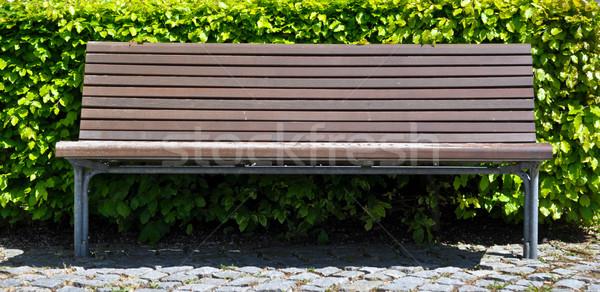 wooden bench in front of bush Stock photo © vlaru