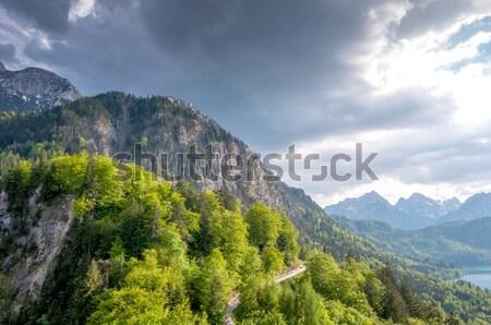 Górskich krajobraz lasu jezioro lata Zdjęcia stock © vlaru