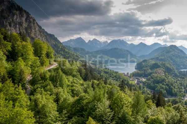 Majestueus berg landschap bos meer zomer Stockfoto © vlaru