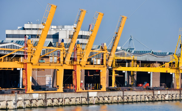 sea cargo port large cranes Stock photo © vlaru
