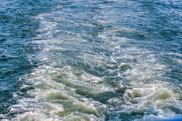 the seethe water Stock photo © vlaru