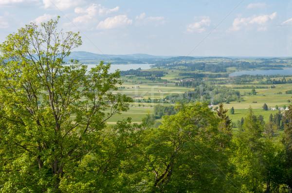 Zielone dolinie rzeki w. charakter niebieski Zdjęcia stock © vlaru