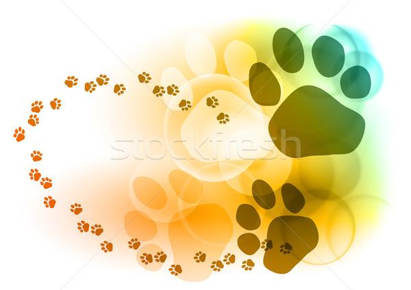 Voet kleur hond kat ontwerp Stockfoto © vlastas