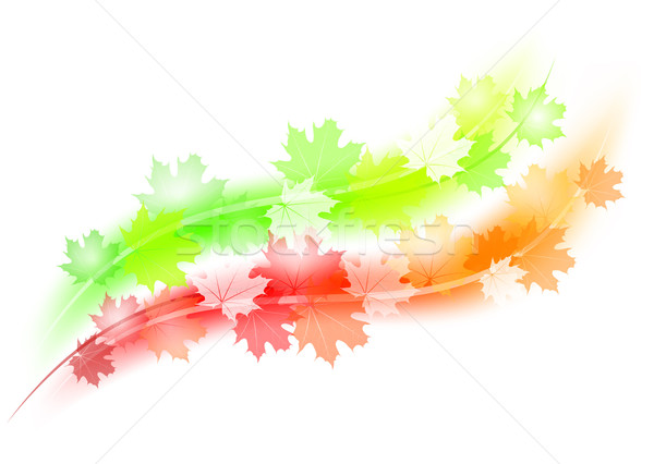 Stockfoto: Najaar · lijnen · groene · Rood · textuur · achtergrond