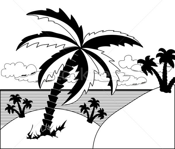 Tropical landscape Stock photo © Volina