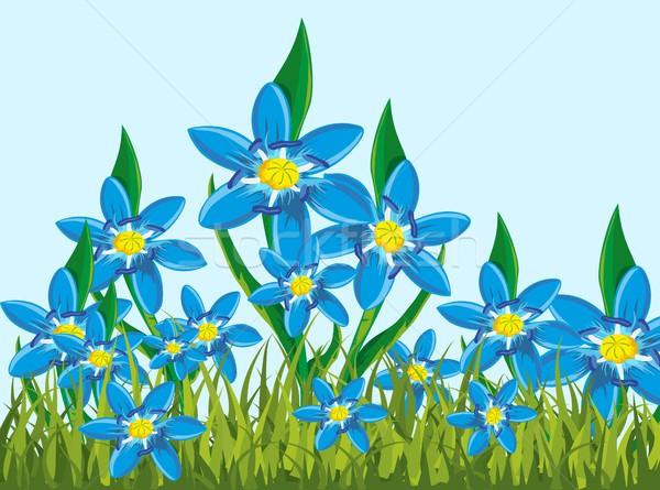 Ilustração lata flores primavera grama abstrato Foto stock © Volina
