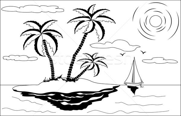 тропические пейзаж черно белые пальма солнце Чайки Сток-фото © Volina