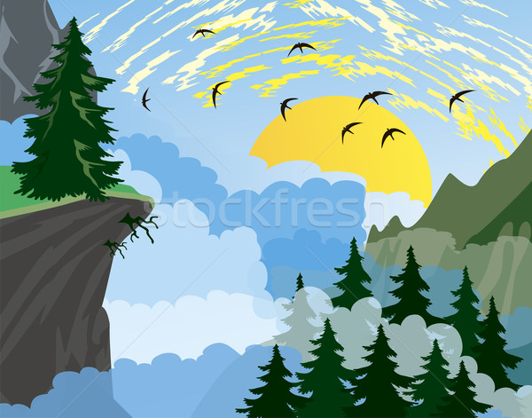 лес горные ель деревья гор утра Сток-фото © Volina