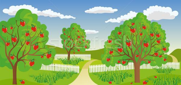 Elma ağacı sakin çevre çiçek Stok fotoğraf © Volina