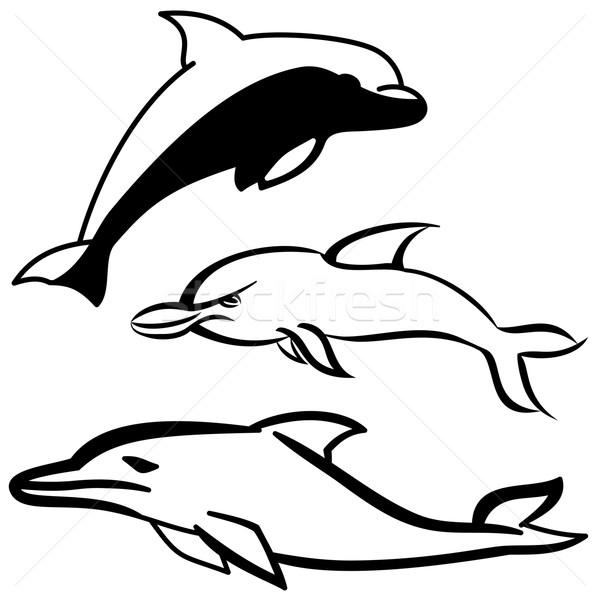 Golfinho conjunto simples preto e branco desenho animado ícone Foto stock © Volina