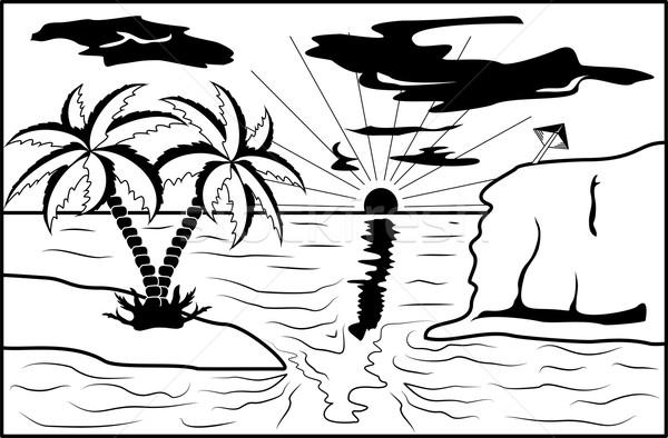 черно белые тропические пейзаж пальма солнце дерево Сток-фото © Volina