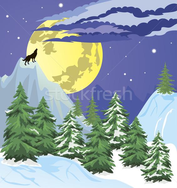 Night winter forest scene Stock photo © Volina