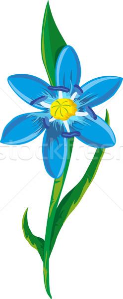 Ilustração azul flor da primavera flores abstrato natureza Foto stock © Volina