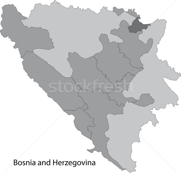 Gray Bosnia and Herzegovina map Stock photo © Volina