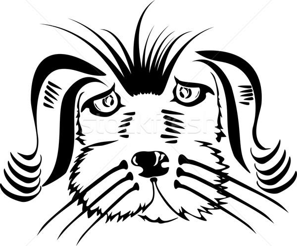 Cão cabeça ilustração branco cara arte Foto stock © Volina