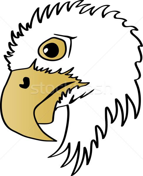Águia cabeça perfil ilustração lado cara Foto stock © Volina