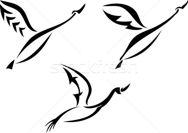лебедя дизайна набор силуэта Flying природы Сток-фото © Volina