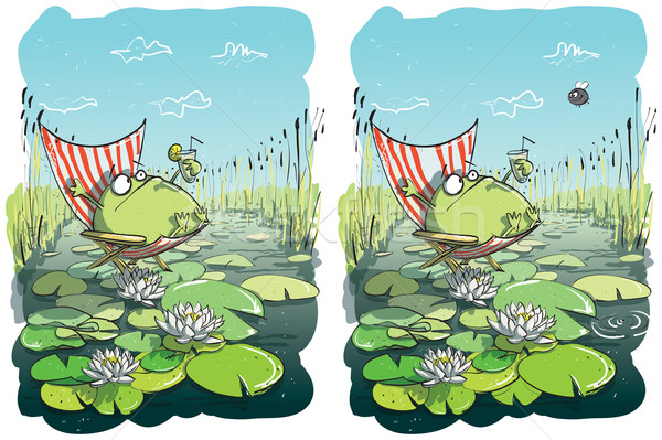 Funny Frog Differences Visual Game Stock photo © VOOK