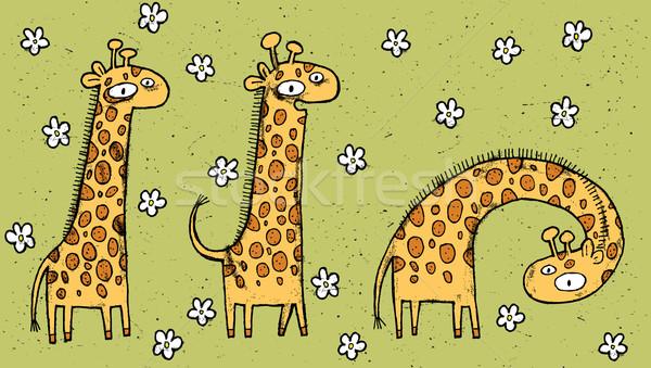 Hand drawn grunge illustration of three giraffes on floral backg Stock photo © VOOK