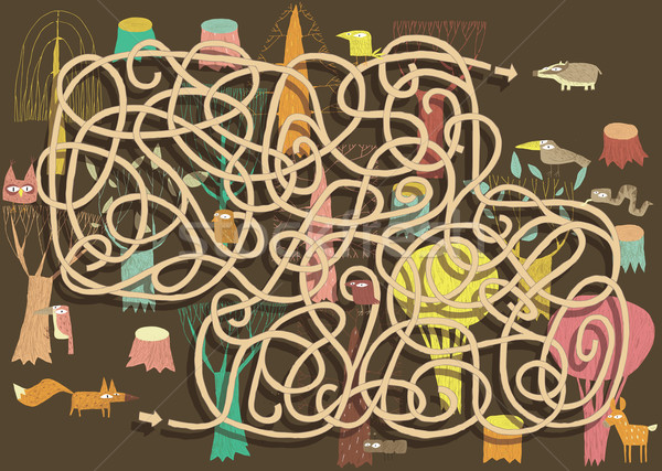 Animali labirinto gioco soluzione nascosto strato Foto d'archivio © VOOK