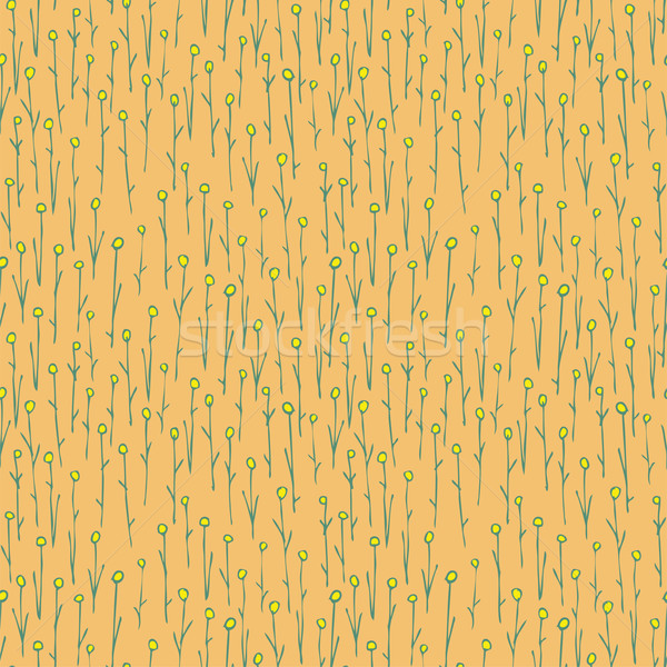Floral Field Seamless Pattern Stock photo © VOOK