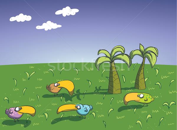 Ptaków wyspa ilustracja eps10 wektora dzieci Zdjęcia stock © VOOK