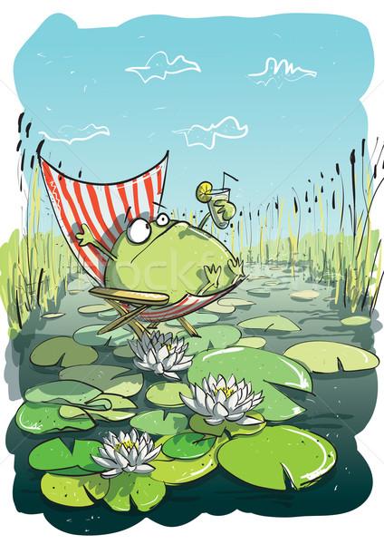 żaba strony rysunek ilustracja eps10 Zdjęcia stock © VOOK