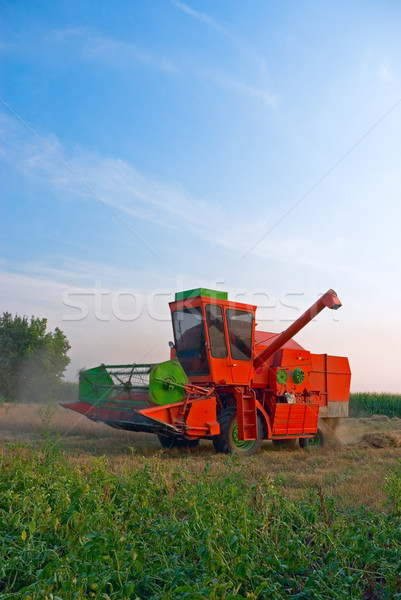 Rojo grande de trabajo campo cielo naturaleza Foto stock © vrvalerian