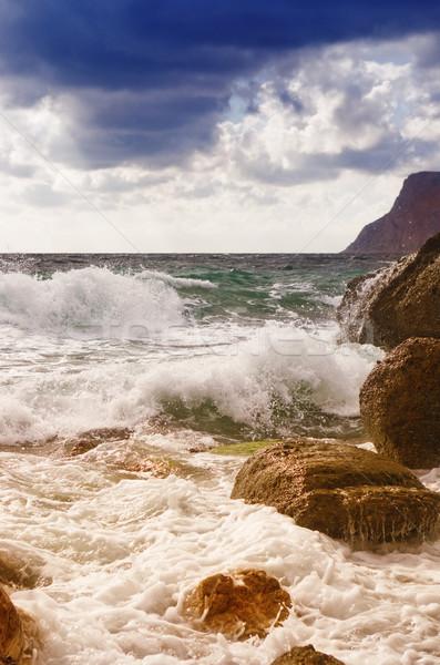 Zee golven hemel zon landschap palm Stockfoto © vrvalerian
