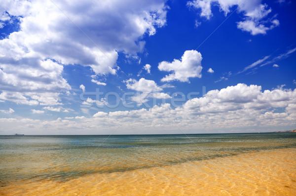 Céu mar verão horizonte Foto stock © vrvalerian