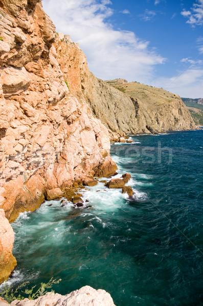 Mar olas agua forestales naturaleza Foto stock © vrvalerian