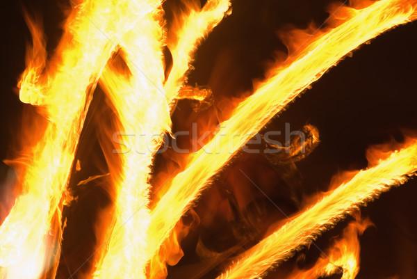 Fire Stock photo © vrvalerian