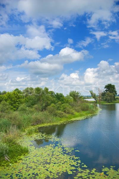 Floresta lago belo azul nublado céu Foto stock © vrvalerian