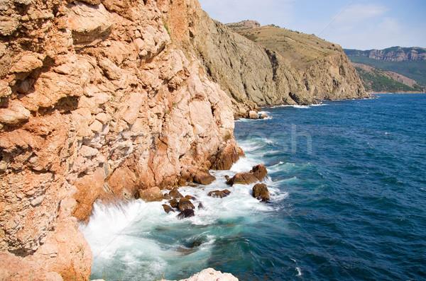 Kustlijn zee golven water boom bos Stockfoto © vrvalerian