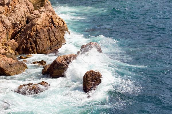 Negro mar olas agua árbol forestales Foto stock © vrvalerian