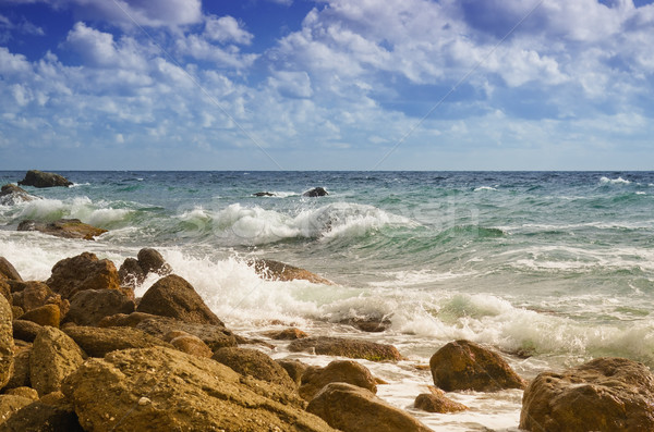 Zee wal golven strand landschap Blauw Stockfoto © vrvalerian