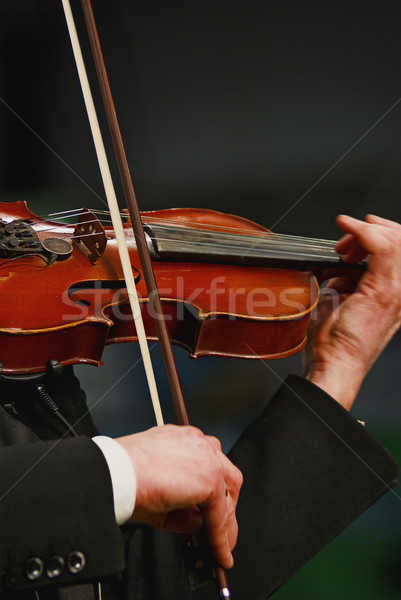 violin  Stock photo © vrvalerian