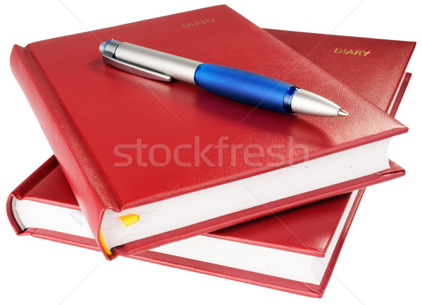 Personal organizers and ball-point pen Stock photo © vtls