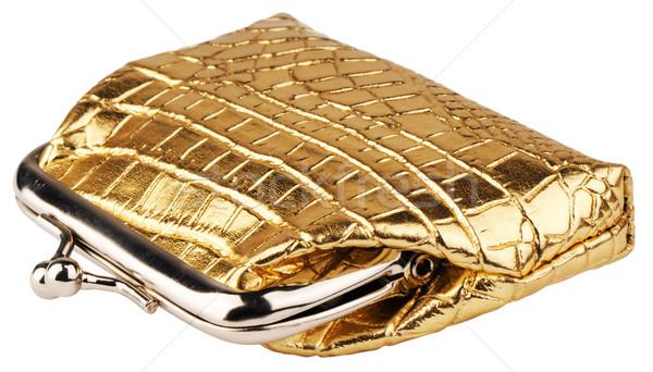 Kapalı cüzdan beyaz altın yalıtılmış Stok fotoğraf © vtls