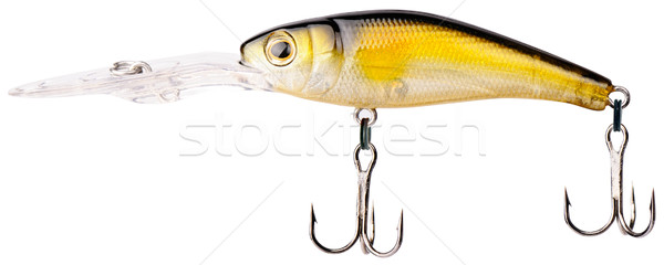 Fishing bait Stock photo © vtls