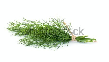 Dill on white Stock photo © vtorous