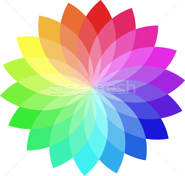 Color wheel Stock photo © vtorous