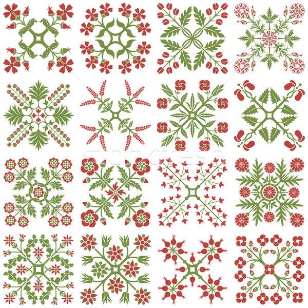 Projeto elementos floral estilo silhueta planta Foto stock © vtorous