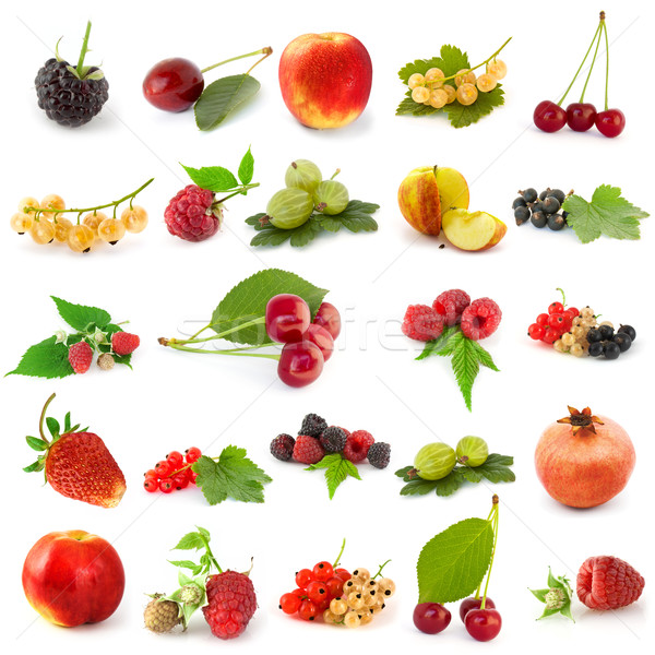 Ingesteld vruchten geïsoleerd witte appel vruchten Stockfoto © vtorous