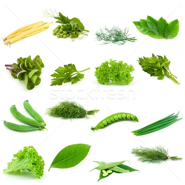 Ingesteld groenten groene bloem witte kruiden Stockfoto © vtorous