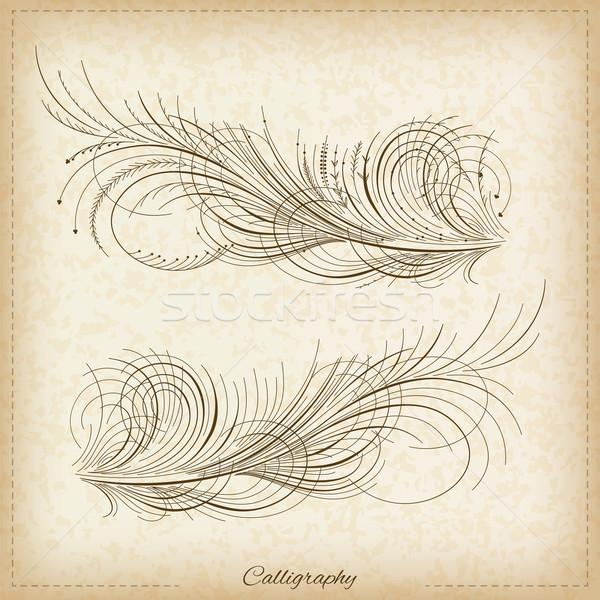Calligraphy elements Stock photo © vtorous